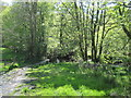 NY4001 : Footpath  to  two  footbridges  over  Trout  Beck by Martin Dawes