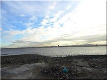 NZ5428 : View across the Tees Estuary by Robert Graham
