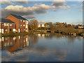 SJ9097 : Ashton Canal, Fairfield Junction by David Dixon