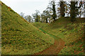 TL8782 : Thetford Castle, Norfolk by Peter Trimming