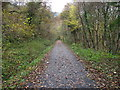 ST1891 : NCN 47 in the Sirhowy Valley by John Light