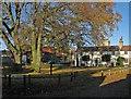 TL4746 : Duxford: The Green by John Sutton