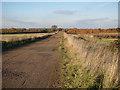 TL3468 : Fen Drayton Lakes access road by Hugh Venables