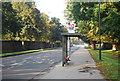 TQ1668 : Bus stop, Hampton Court Rd by N Chadwick
