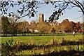 ST0207 : Cullompton : Cullompton Scenery by Lewis Clarke