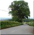 SO4210 : Road from Coed-Cefn to Raglan by Jaggery