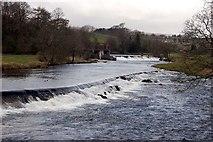 SE0063 : River Wharfe at Grassington by John Sparshatt