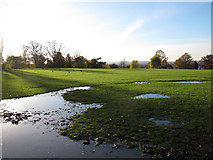 TQ4375 : Waterlogged ground by Stephen Craven