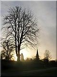 TQ1450 : Sundown at Ranmore, November by Stefan Czapski