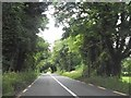 N8089 : The tree lined R162 near Germanagh, Co Meath by Eric Jones