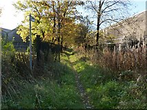 NS4174 : Path to the Dumbuck Hotel by Lairich Rig