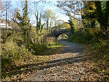 NS4274 : Road bridge over NCN 7 by Lairich Rig