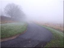 NZ2711 : Track towards Springfield Farm by JThomas