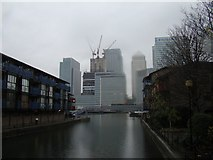 TQ3880 : View of Canary Wharf from Preston's Road by Robert Lamb