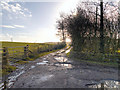 SJ9990 : Track to Cloughend Farm by David Dixon