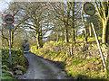 SJ9891 : Ernocroft, Benches Lane by David Dixon