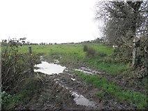 H5173 : Muddy field entrance, Killycurragh by Kenneth  Allen