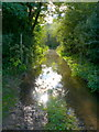 ST9103 : Flooded bridle path by Nigel Mykura