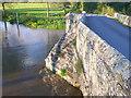 ST9102 : Crawford Bridge by Nigel Mykura