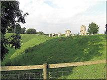 SU1070 : Avebury the stones north of Manor Farm by Stuart Logan
