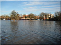 SO8455 : Flooded Worcester Racecourse by Philip Halling
