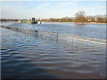 SO8455 : Flooded Pitchcroft in Worcester by Philip Halling
