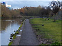 SK5803 : New landscaping along the Grand Union Canal by Mat Fascione