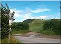 ST7203 : The Wessex Ridgeway at Folly by Des Blenkinsopp