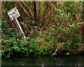 SP1106 : 'Private Fishing' sign, River Coln, Bibury by nick macneill