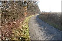 TQ9534 : Unnamed lane near Woodchurch by Julian P Guffogg