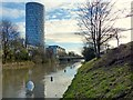 SK5803 : Grand Union Canal flooded towpath by Mat Fascione