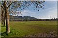 TQ1950 : Big Field by Ian Capper