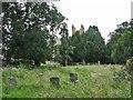 TL4568 : Cottenham churchyard by John Sutton
