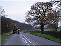 TL2658 : Hedge Cutting on the B1040 by Adrian Cable