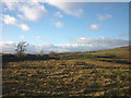 NY4400 : Rough pasture on Hugill Fell by Karl and Ali