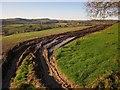 SY2597 : Ruts in field by Vicarage Wood by Derek Harper