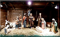 TQ8833 : Christmas crib in the church of St. Mildred, Tenterden by pam fray