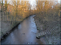 SJ9398 : River Tame from Dukinfield Aqueduct by David Dixon