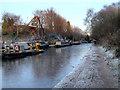 SJ9197 : Ashton Canal, Boatyard by David Dixon
