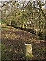 SX4972 : Boundary stone, Middlemoor by Derek Harper