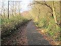 ST1087 : Taff Trail/Celtic Trail between Nantgarw and Rhydyfelin by John Light