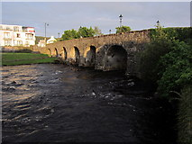 G2604 : Foxford Bridge by Pamela Norrington