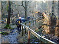 SP9715 : Steps on the steep slope between The Coombe and Hanging Coombe by Michael Trolove