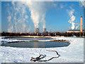 SU5091 : Frozen Pond, Great Western Park by Des Blenkinsopp