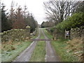 NY9268 : Gate Posts and Drive to Crag House by Les Hull