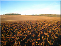 SU5846 : Ploughed field by the A30 by Given Up