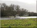 TL4356 : Grantchester Meadows: flooded footbridges by John Sutton