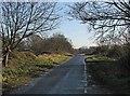 TL5745 : Towards Bartlow by John Sutton
