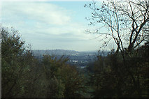 TQ2652 : Looking eastwards from the North Downs Way in Great Buck Wood by Christopher Hilton
