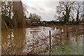 TQ2547 : Flooded River Mole at Sidlow Bridge  by Ian Capper